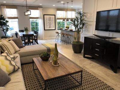 Camarillo Single Family Home For Sale: 206 Carrizo Creek Road