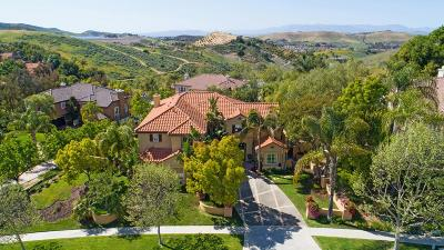 Simi Valley Single Family Home For Sale: 237 Sycamore Grove Street