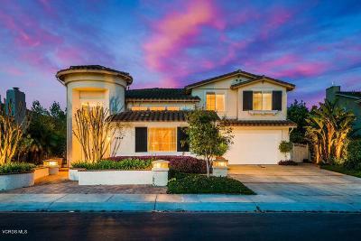 Camarillo Single Family Home For Sale: 2868 Diamond Drive