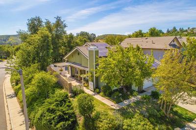 Oak Park Single Family Home For Sale: 407 View Park Court
