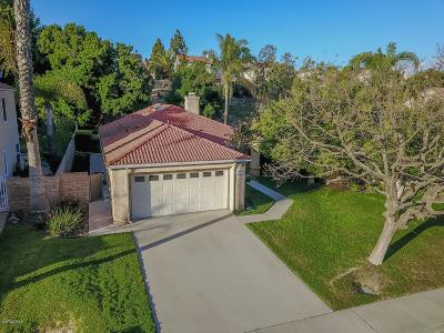 Moorpark Single Family Home For Sale: 15313 Seitz Court