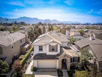 Camarillo Single Family Home For Sale: 3836 Fountain Street