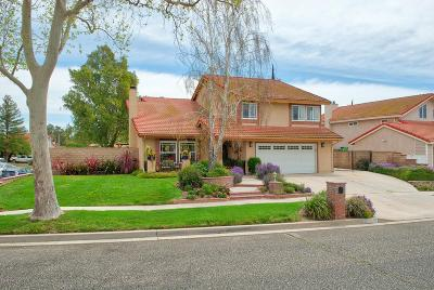 Simi Valley Single Family Home For Sale: 3024 Kilaine Drive