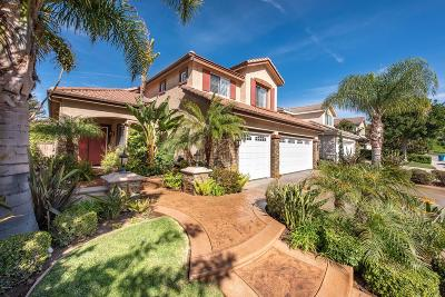 Simi Valley Single Family Home For Sale: 1954 Winterset Place