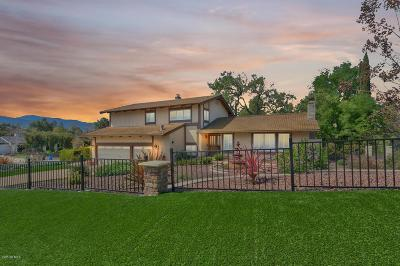 Thousand Oaks Single Family Home For Sale: 905 Calle Brusca