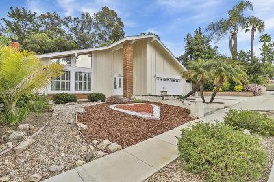 Thousand Oaks Single Family Home For Sale: 465 Queensbury Street