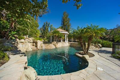 Thousand Oaks Single Family Home For Sale: 1685 Hauser Circle
