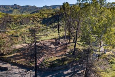 Agoura Hills Residential Lots & Land For Sale: 28804 South Lakeshore Drive
