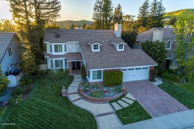 Agoura Hills Single Family Home For Sale: 5719 Middle Crest Drive