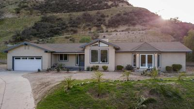 Canyon Country Single Family Home For Sale: 16752 Vasquez Canyon Road