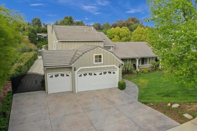 Simi Valley Single Family Home For Sale: 1867 Rocking Horse Drive