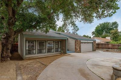 Ojai Single Family Home For Sale: 316 North La Luna Avenue