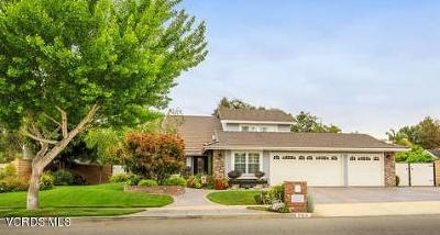Simi Valley Single Family Home For Sale: 538 Valley Gate Road