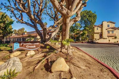 Camarillo Condo/Townhouse For Sale: 1234 Via Montoya