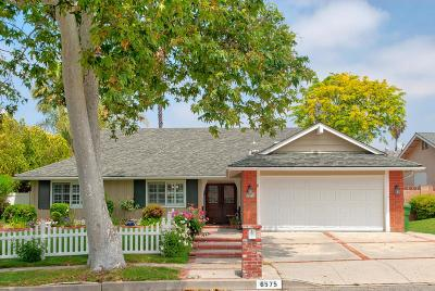 Oak Park Single Family Home Active Under Contract: 6575 Tamarind Street