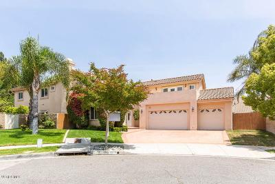 Simi Valley Single Family Home For Sale: 2876 Waterfall Lane