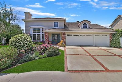 Agoura Hills Single Family Home For Sale: 5833 Middle Crest Drive
