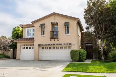 Camarillo Single Family Home For Sale: 4804 Calle Brisa
