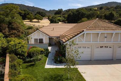 Thousand Oaks Single Family Home For Sale: 509 Hillsborough Street
