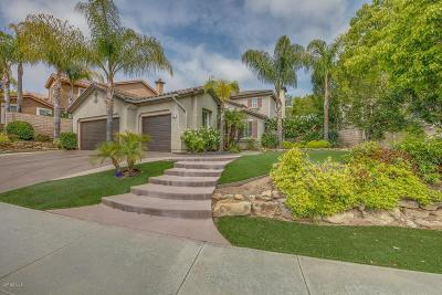Simi Valley Single Family Home For Sale: 486 Canyon Crest Drive