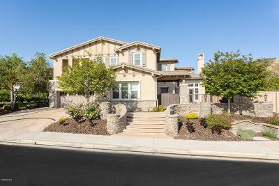 Simi Valley Single Family Home For Sale: 4224 Copperstone Lane
