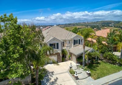 Westlake Village Single Family Home For Sale: 2523 Montecito Avenue