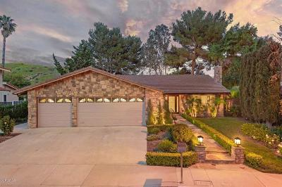 Westlake Village Single Family Home For Sale: 6136 Landino Drive