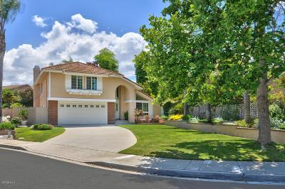 Ventura County Single Family Home For Sale: 384 Continental Court