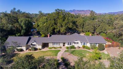 Ojai Single Family Home For Sale: 802 El Toro Road