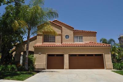 Moorpark Single Family Home For Sale: 11565 Chestnut Ridge Street