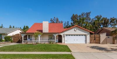 Newbury Park Single Family Home For Sale: 4191 Blackwood Street