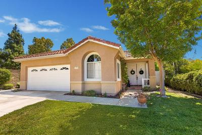 Camarillo Single Family Home For Sale: 791 Vista Palacio
