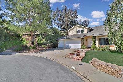 Thousand Oaks Single Family Home For Sale: 2872 Coneflower Street