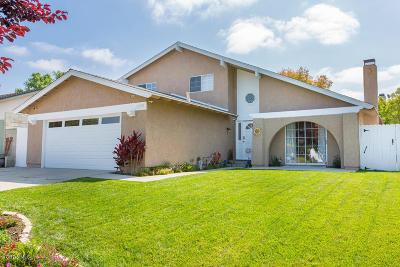 Agoura Hills Single Family Home For Sale: 5750 Rainbow Hill Road