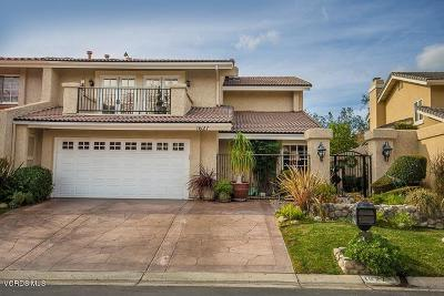 Westlake Village Single Family Home For Sale: 1627 Ryder Cup Drive