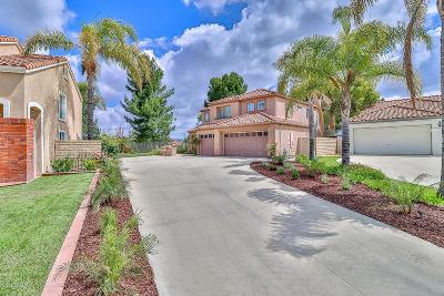 Thousand Oaks Single Family Home For Sale: 1671 Calle Rochelle
