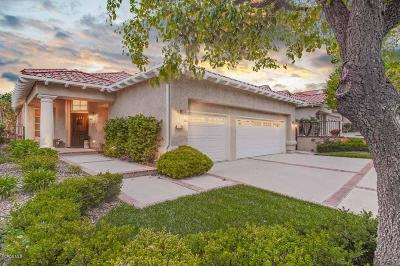 Westlake Village Single Family Home For Sale: 1755 Southern Hills Place