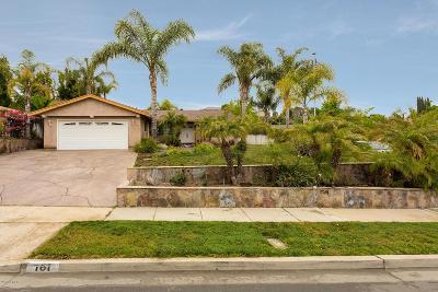 Newbury Park Single Family Home For Sale: 161 Walter Avenue