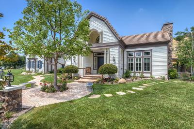 Westlake Village Single Family Home For Sale: 1475 Bridgegate Street