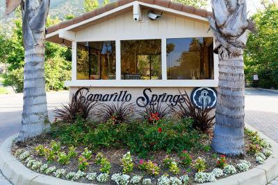 Camarillo Single Family Home Active Under Contract: 6612 Lada Avenue