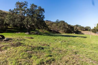 Agoura Hills Residential Lots & Land For Sale: 28730 Agoura Rd Road