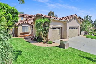 Simi Valley Single Family Home For Sale: 143 Brooks Court