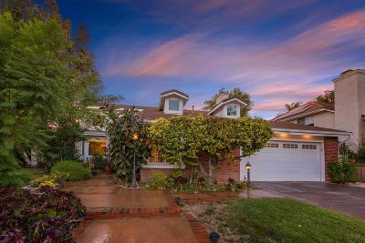 Agoura Hills Single Family Home For Sale: 5765 Green Meadow Drive