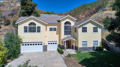 Agoura Hills Single Family Home For Sale: 2504 Sierra Creek Road