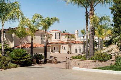 Calabasas Single Family Home For Sale: 24927 Palmilla Drive