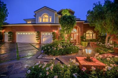 Moorpark Single Family Home For Sale: 11142 Lopez Court