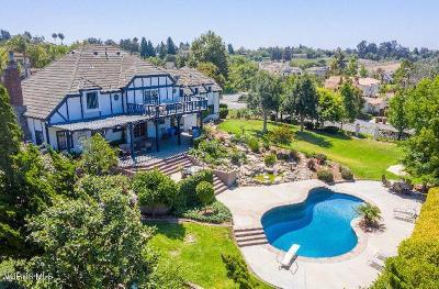 Camarillo Single Family Home For Sale: 2051 Via Veneto