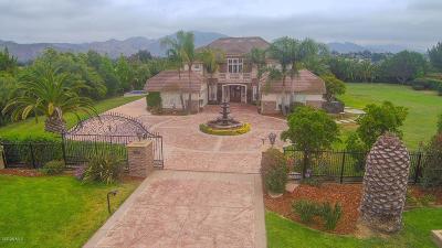 Camarillo Single Family Home For Sale: 5326 Calarosa Ranch Road