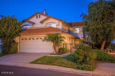 Agoura Hills Single Family Home For Sale: 5300 Francisca Way