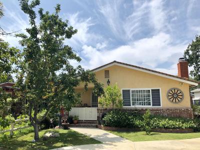 Thousand Oaks Single Family Home For Sale: 645 Paige Lane